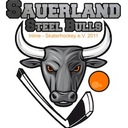 Sauerland Steel Bulls I